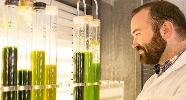 Biodesign Swette Center for Environmental Biotechnology